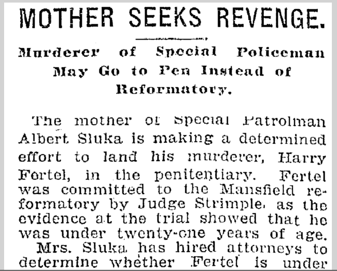 Mother Seeks Revenge, Plain Dealer newspaper article, 15 May 1907