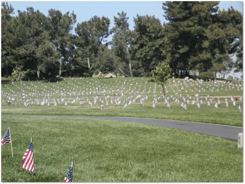 U.S. flags placed on veterans' graves at Riverside National Cemetery