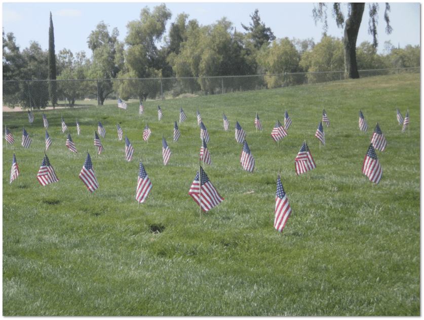 photo of U.S. flags placed on veterans' graves at Riverside National Cemetery