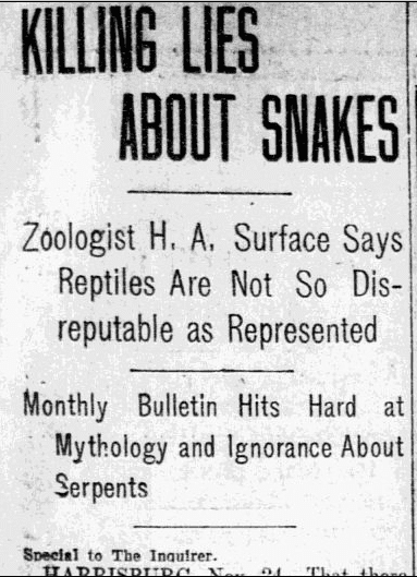 Killing Lies about Snakes, Philadelphia Inquirer newspaper article 25 November 1906