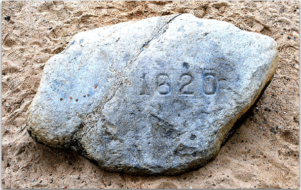 photo of Plymouth Rock