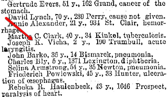 death notice for Joseph K. Vicha, Plain Dealer newspaper article 25 February 1890
