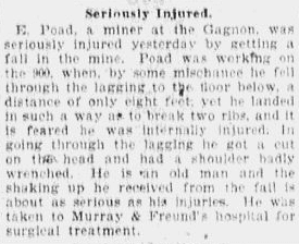 (Elijah Poad) Seriously Injured, Anaconda Standard newspaper article 8 June 1899