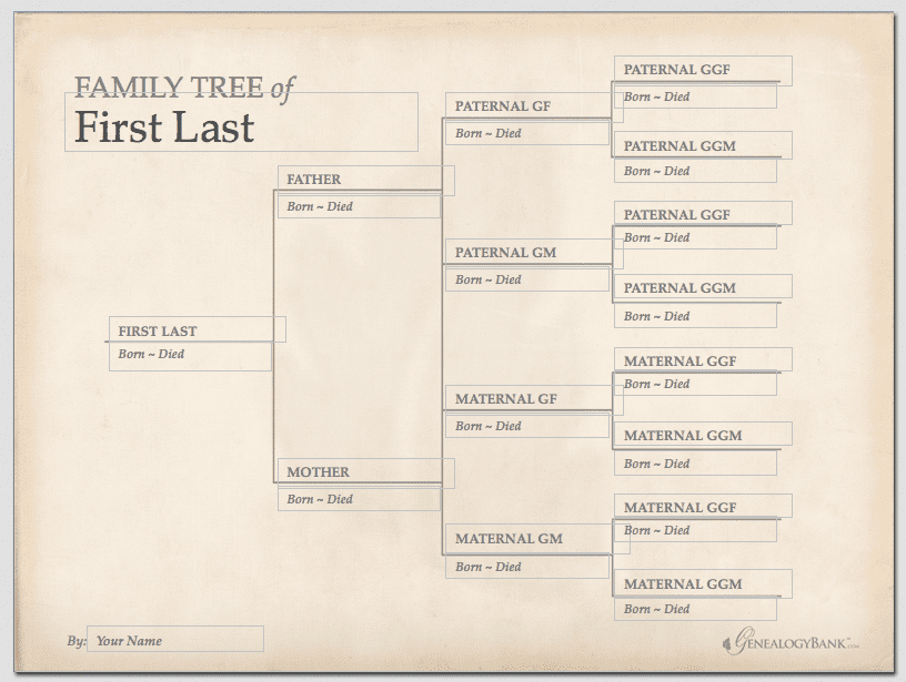Digital Family Tree Template