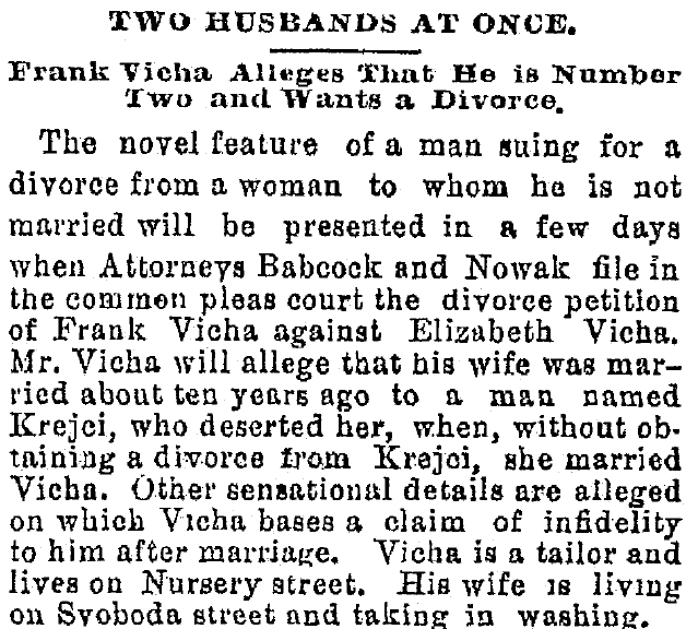 article about Frank Vicha filing for divorce, Plain Dealer newspaper article 17 March 1889