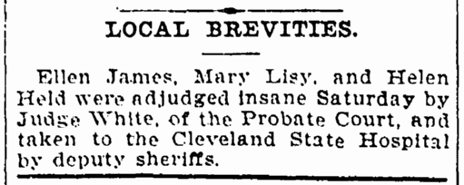 article about Mary Lisy, Cleveland Leader newspaper article 17 May 1897