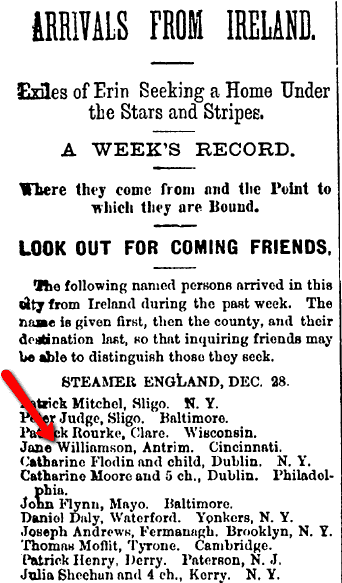 passenger list, Irish Nation newspaper article 7 January 1882