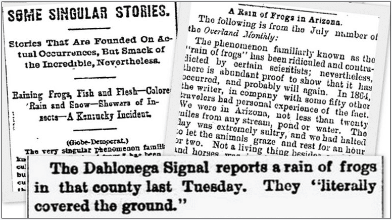 a collage of newspaper articles reporting incidents of it raining frogs
