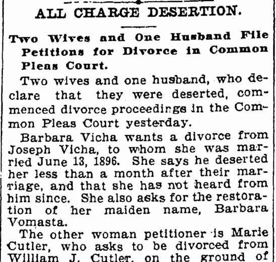 divorce notice for Joseph and Barbara Vicha, Cleveland Leader newspaper article 8 August 1899
