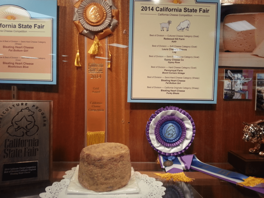 photo of the gold cheese award at the California State Fair