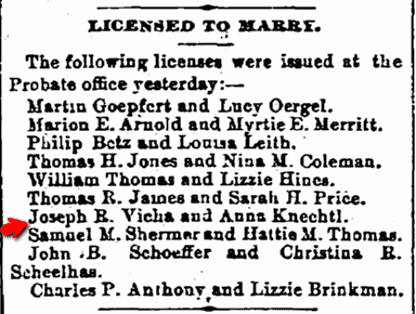 marriage license announcement for Joseph Vicha and Anna Knechtl, Cleveland Leader newspaper article 29 April 1887