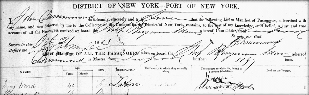 screenshot of New York Passenger Lists, 1820-1891