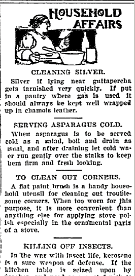 household cleaning tips, Savannah Tribune newspaper article 19 August 1905
