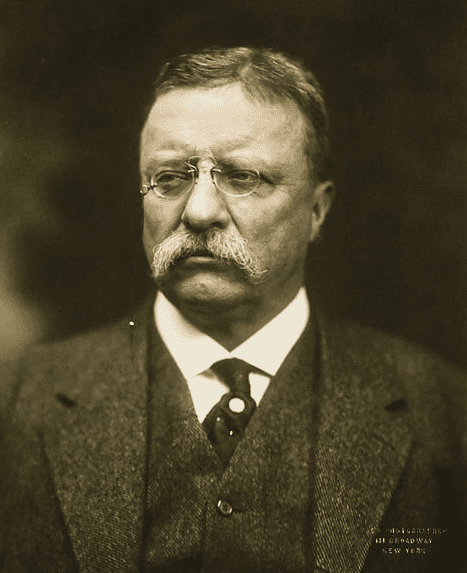 photo of ex-President Theodore Roosevelt, 1915