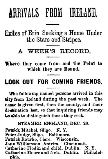 passenger list, Irish Nation newspaper article 7 January 1882