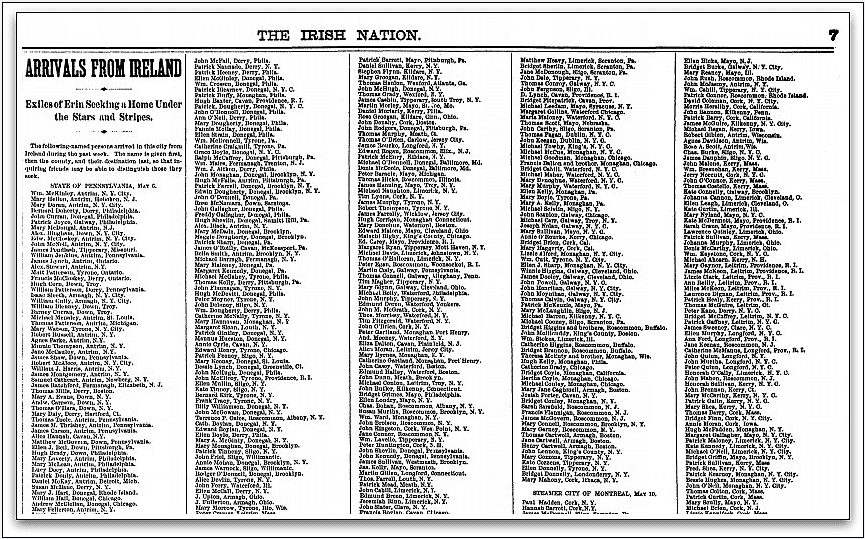 passenger list, Irish Nation newspaper article 20 May 1882