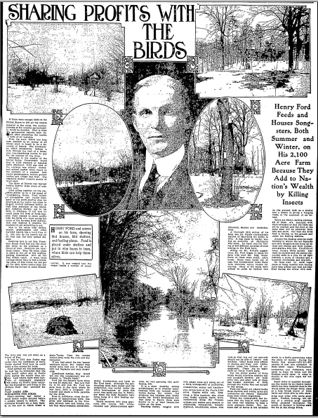 article about Henry Ford and his love of birdwatching, Macon Telegraph newspaper article 24 May 1914