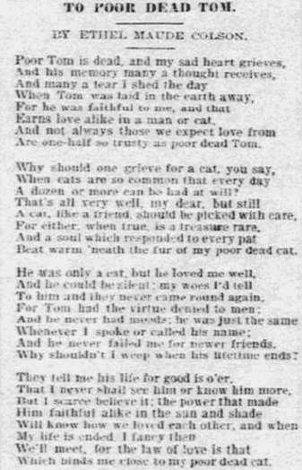 poem Ethel Maude Colson wrote to her cat, Daily Inter Ocean newspaper article 4 August 1895