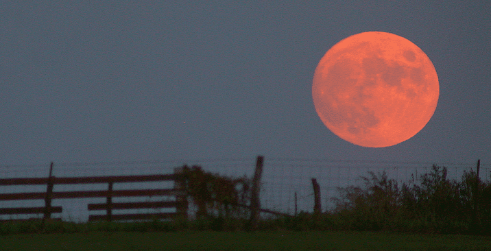 photo of a full moon rising