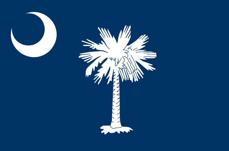 illustration of the state flag of South Carolina