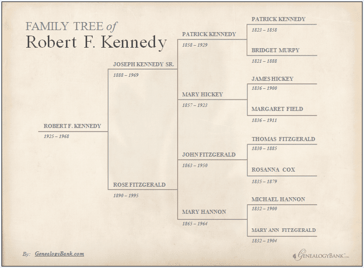 family tree for Robert F. Kennedy