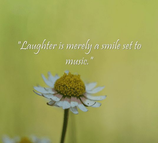 """Laughter is merely a smile set to music."""