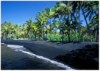 photo of Punaluu Beach Park, Big Island, Hawaii