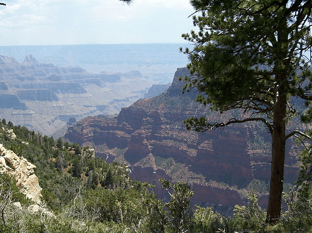 photo of the North Rim of the Grand Canyon, Arizona