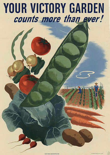 illustration: WWII Victory Garden poster