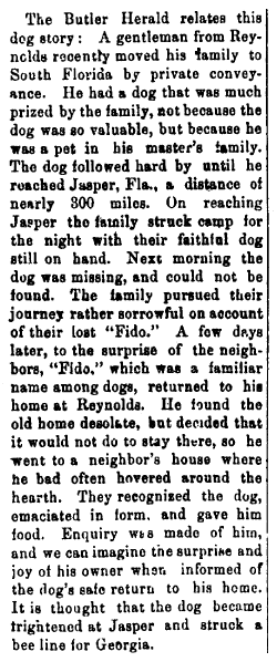 article about a dog named Fido, Marietta Journal newspaper article 9 November 1893