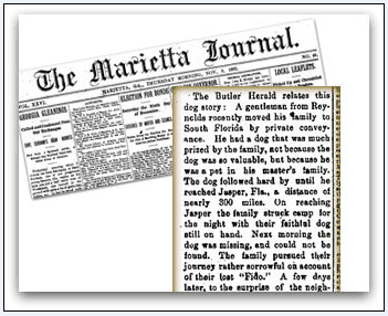 montage of a newspaper clipping about a dog named Fido, Marietta Journal newspaper article 9 November 1893