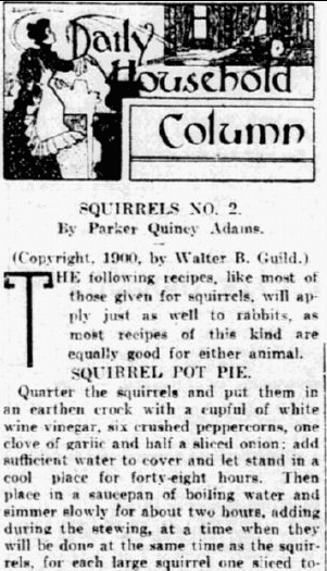 squirrel recipes, Philadelphia Inquirer newspaper article 31 July 1900
