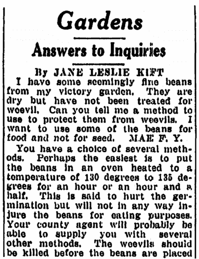 letters about WWII Victory Gardens, Springfield Republican newspaper article 7 December 1943