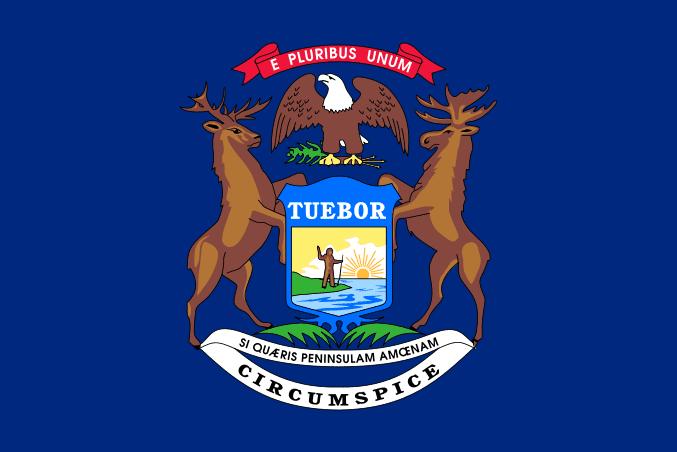 Illustration: Michigan state flag