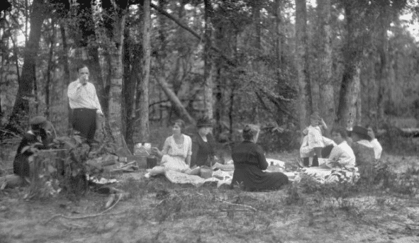Photo: picnic in a wooded area, by Harry Walker, 1900-1949