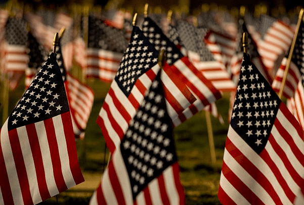 Photo: American flags on the National Mall. Credit: Lipton sale; Wikimedia Commons.