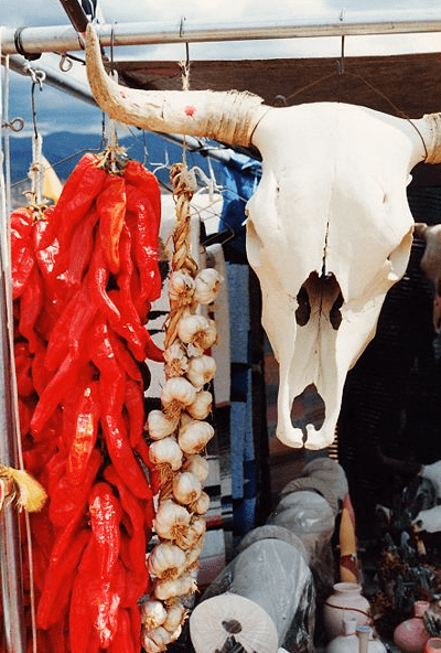 Photo: symbols of the southwestern states, a string of chili peppers and a bleached cow's skull, found at a market near Santa Fe, New Mexico