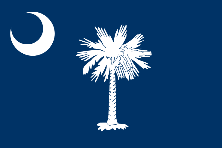 Illustration: South Carolina state flag