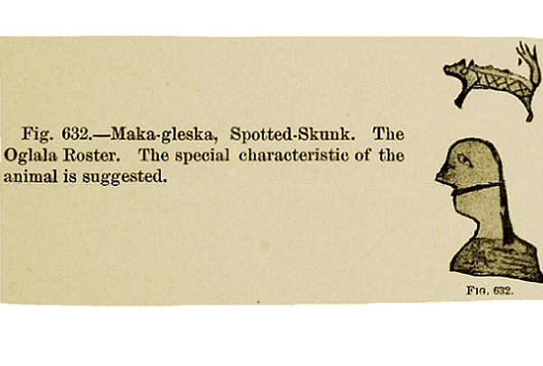 Illustration: a pictograph from Red Cloud's 1884 census of the Oglala Lakota Sioux warrior Spotted Skunk. Credit: Bureau of Ethnology, Smithsonian Institution.