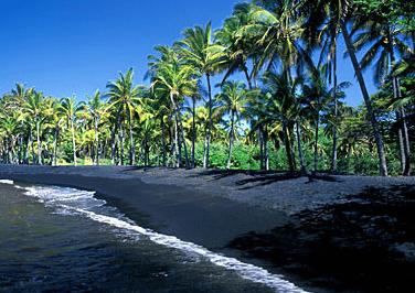 "Photo: Punaluu Beach Park, with black sand beach and coconut palms, on the island of Hawai'i – the ""Big Island"""