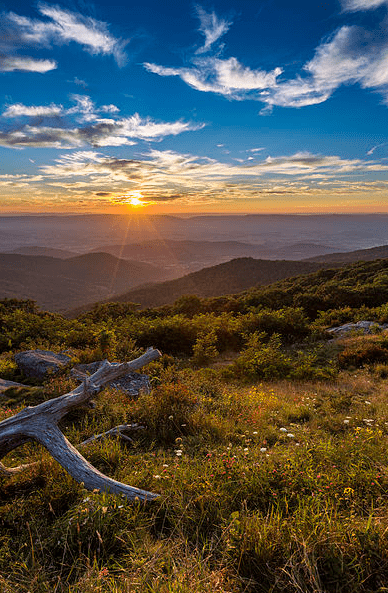Photo: Shenandoah National Park, Virginia