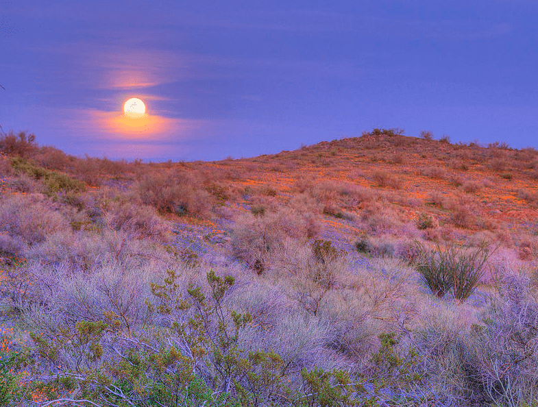 Photo: moonrise over San Carlos Apache Indian Reservation, Arizona