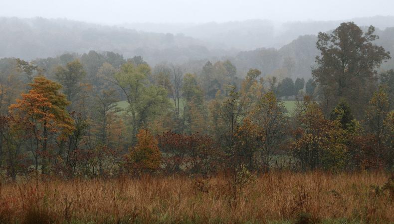 Photo: Hoosier National Forest near Patoka Lake in southwestern Orange County, Indiana