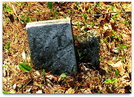 Photo: gravestone of Edward Fox, Sanborn Cemetery, Meredith, Belknap County, New Hampshire