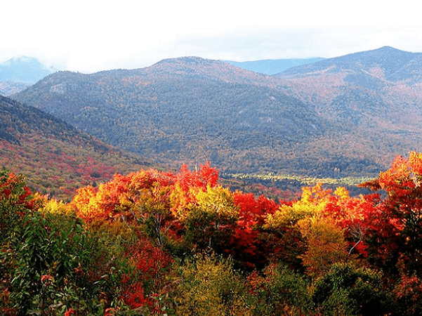 Photo: the forests in New Hampshire in autumn. Credit: Someone35; Wikimedia Commons.