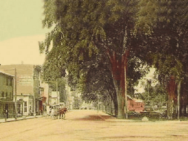 Photo: view of West Park (now Columbus Park) in downtown Stamford, Connecticut, from a 1906 postcard. Credit: Wikimedia Commons.