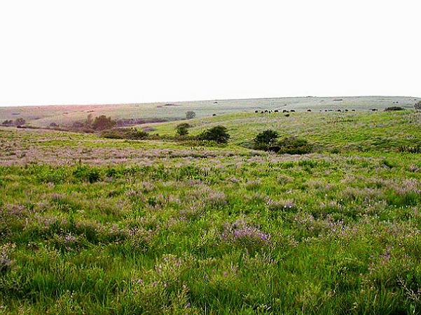 Photo: Flint Hills, Kansas. Credit: Edwin Olson; U.S. Fish and Wildlife Service; Wikimedia Commons.