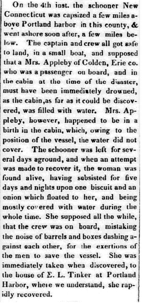 An article about Mary Applebee, Jamestown Journal newspaper article 25 September 1833