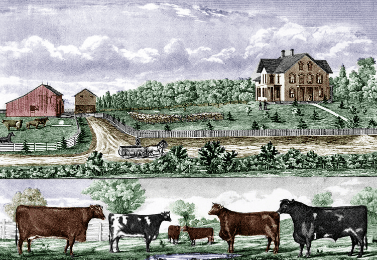 "Illustration: ""Typical Iowa Farm, Muscatine County, Iowa,"" by Alfred Andreas, 1875"