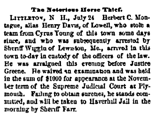 An article about a horse thief, Boston Journal newspaper article 25 July 1872